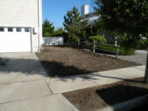 Landscaping Renovation 1