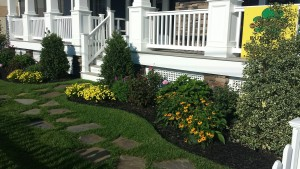 A beautiful front walk after landscaping.
