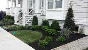 A home's front yard after landscaping