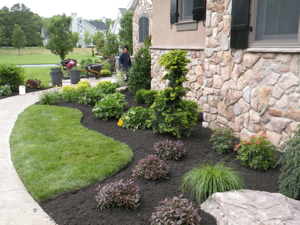 Landscape pictures before after for New landscape design