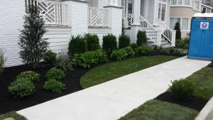A residential sidewalk after landscaping is complete